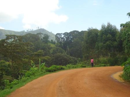 Mardi matin, la route entre Magamba et Migambo...