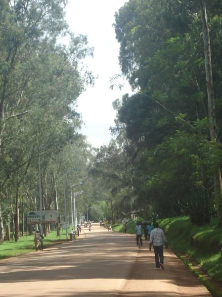 La route qui longe l'Université