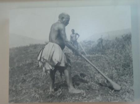 Paysan sarclant sa terre avec sa houe, 1910