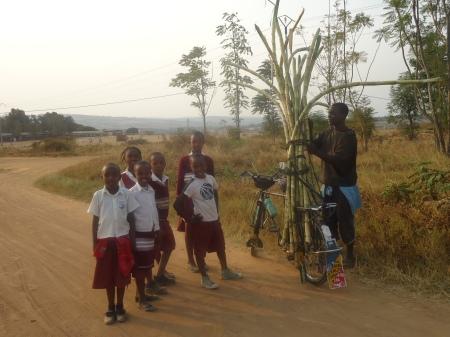 Vendeur de canne à sucre et enfants, Nyagatare, juillet 2013