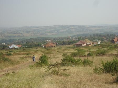 Nyagatare, saison sèche, juillet 2013